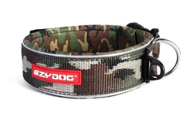 Collar for carrying the guard for dogs