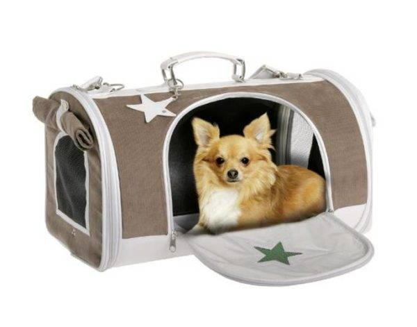Bag carrying box for dogs